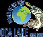 jezero joca logo