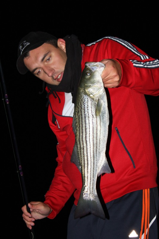 me and the striped bass